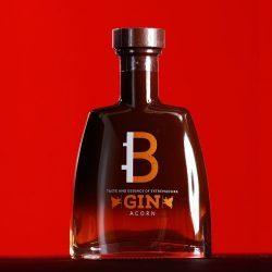 B GIN acorn